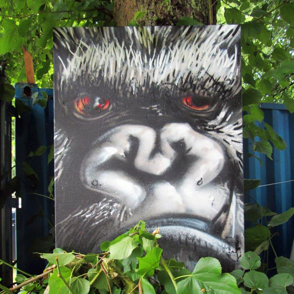 gorilla klein